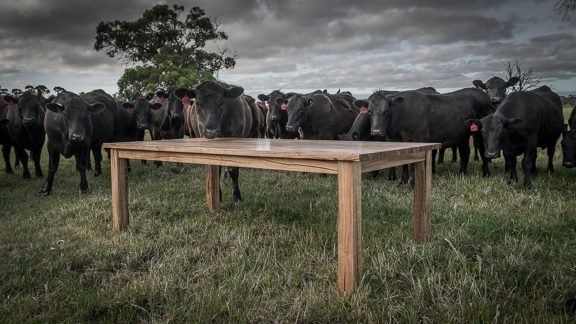 Cow_Dining_Table